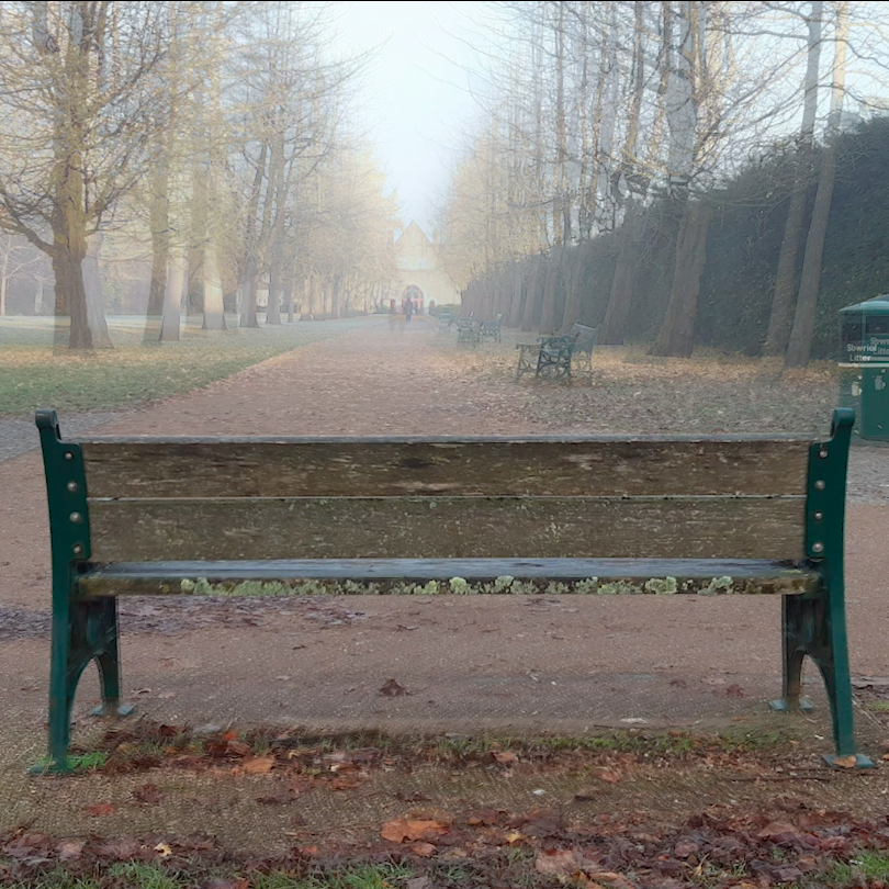 Bench View on the Way to Work